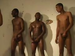 Randy black studs in gay group sex fucking ass and giving head