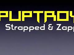 PupTroy, Strapped Down & Zapped, Part 1