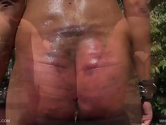 Whipping Holly - QueenSnake.com - QueenSect.com