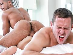 Ass, Ass, Gay