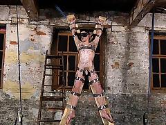 Hardcore gay BDSM with Aaron Aurora and Ashton Bradley
