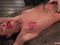 Cecilia Vega gets her nipples covered with wax in terrific BDSM scene