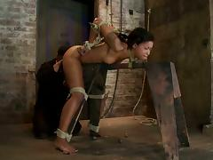Bound, BDSM, Bondage, Bound, Doggystyle, Toys